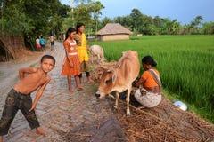 τρόπος ζωής αγροτικός Στοκ Φωτογραφίες