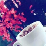 Τρόπος ζωής καφέ στοκ εικόνες με δικαίωμα ελεύθερης χρήσης