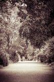 Τρόπος μέσω ενός πάρκου Στοκ Εικόνα