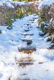 τρόπος σκαλοπατιών με το χιόνι Στοκ Εικόνες