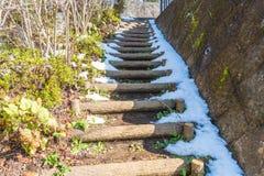 τρόπος σκαλοπατιών με το χιόνι Στοκ Φωτογραφίες