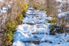 τρόπος σκαλοπατιών με το χιόνι Στοκ εικόνα με δικαίωμα ελεύθερης χρήσης