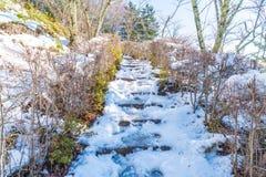 τρόπος σκαλοπατιών με το χιόνι Στοκ Φωτογραφία