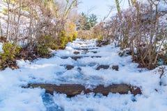 τρόπος σκαλοπατιών με το χιόνι Στοκ φωτογραφία με δικαίωμα ελεύθερης χρήσης