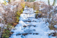τρόπος σκαλοπατιών με το χιόνι Στοκ εικόνες με δικαίωμα ελεύθερης χρήσης