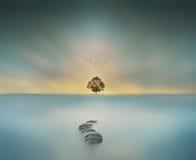 τρόπος στο μαγικό μεγάλο δέντρο ουρανού στη μακροχρόνια έκθεση waterscape Στοκ Εικόνες
