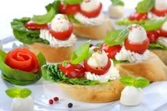 Τρόφιμα δάχτυλων με τη μοτσαρέλα Στοκ Εικόνες