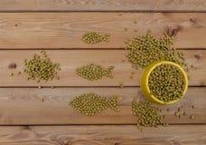 Τρόφιμα γατών στο κύπελλο και στο ξύλινο υπόβαθρο Στοκ εικόνες με δικαίωμα ελεύθερης χρήσης