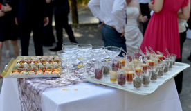 Τρόφιμα για το γαμήλιο κοκτέιλ Στοκ φωτογραφία με δικαίωμα ελεύθερης χρήσης