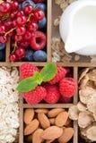 Τρόφιμα για το πρόγευμα - oatmeal, καρύδια, μούρα και γάλα Στοκ εικόνες με δικαίωμα ελεύθερης χρήσης
