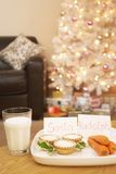Τρόφιμα για Santa και το Rudolph στο σπίτι Στοκ Φωτογραφία