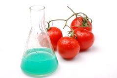 τρόφιμα ΓΤΟ Στοκ εικόνα με δικαίωμα ελεύθερης χρήσης