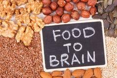Τρόφιμα επιγραφής στον εγκέφαλο με την υγιή κατανάλωση ως βιταμίνη πηγής και ανόργανα άλατα, τρόφιμα για την καλή έννοια μνήμης στοκ φωτογραφία