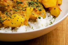 τρόφιμα Ινδός Στοκ Εικόνα