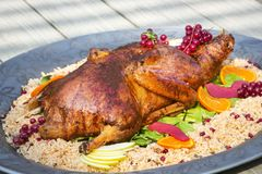 Τρόφιμα και ρύζι της Τουρκίας - γεύμα μεσημεριανού γεύματος, Στοκ Φωτογραφία
