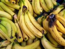 Τρόφιμα Μπανάνες Στοκ εικόνες με δικαίωμα ελεύθερης χρήσης