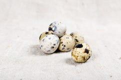 Τρόφιμα: ομάδα αυγών ορτυκιών Στοκ Φωτογραφία