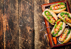 Τρόφιμα οδών Χοτ-ντογκ με τη μουστάρδα, την καυτή σάλτσα, το κρεμμύδι και τα πράσινα Στοκ Φωτογραφίες