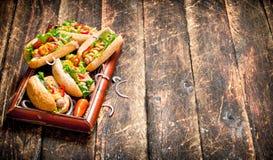 Τρόφιμα οδών Χοτ-ντογκ με τη μουστάρδα, την καυτή σάλτσα, το κρεμμύδι και τα πράσινα Στοκ εικόνα με δικαίωμα ελεύθερης χρήσης