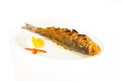 Τρόφιμα που απομονώνονται στο άσπρο υπόβαθρο Στοκ Εικόνες