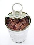 τρόφιμα που κονσερβοπο&iot Στοκ εικόνες με δικαίωμα ελεύθερης χρήσης