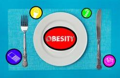 Τρόφιμα που προκαλούν την παχυσαρκία Στοκ Εικόνα