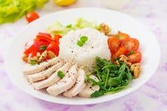 τρόφιμα σιτηρεσίου Στήθος κοτόπουλου με το ρύζι και τα λαχανικά Στοκ φωτογραφία με δικαίωμα ελεύθερης χρήσης
