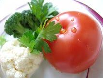 τρόφιμα σιτηρεσίου Στοκ Φωτογραφία