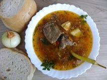 Τρόφιμα Σούπα παπιών στοκ εικόνες με δικαίωμα ελεύθερης χρήσης