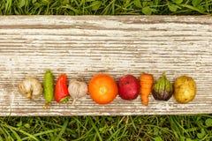 τρόφιμα υγιή ακατέργαστα τρόφιμα συγκομιδών φθινοπώρου για τους χορτοφάγους Στοκ φωτογραφία με δικαίωμα ελεύθερης χρήσης