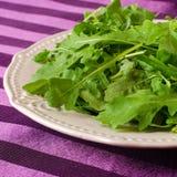 τρόφιμα υγιή Arugula μαρουλιού το πιάτο Στοκ Εικόνα