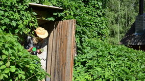 Τρόφιμα υπογείων κηπουρών φιλμ μικρού μήκους