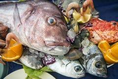 τρόφιμα φρέσκα Στοκ Εικόνα