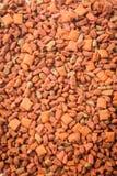 τρόφιμα χοντρών κομματιών γα Στοκ φωτογραφία με δικαίωμα ελεύθερης χρήσης
