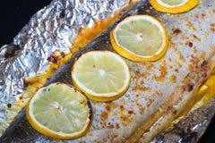 Τρόφιμα ψαριών Στοκ Εικόνα