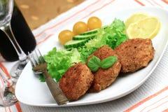 τρόφιμα 19 πιάτων Στοκ Εικόνες