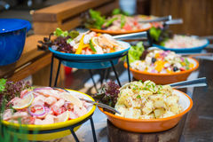 Τρόφιμα Appitizer στον μπουφέ γραμμών Στοκ εικόνα με δικαίωμα ελεύθερης χρήσης