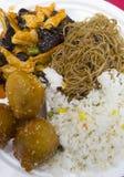 Τρόφιμα Chineese, κοτόπουλο με το σουσάμι Στοκ εικόνα με δικαίωμα ελεύθερης χρήσης