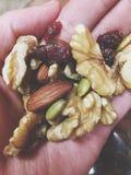 τρόφιμα healty Στοκ Εικόνες