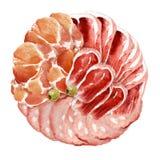 Τρόφιμα Watercolor Λιχουδιές κρέατος ελεύθερη απεικόνιση δικαιώματος