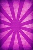 τρύγος ήλιων ακτίνων ανασκ διανυσματική απεικόνιση