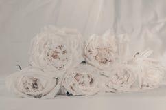 Τρύγος λουλουδιών που έγινε με τα φίλτρα χρώματος Στοκ εικόνα με δικαίωμα ελεύθερης χρήσης