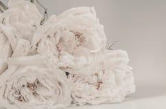Τρύγος λουλουδιών που έγινε με τα φίλτρα χρώματος Στοκ Εικόνα