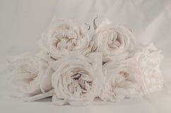 Τρύγος λουλουδιών που έγινε με τα φίλτρα χρώματος Στοκ φωτογραφία με δικαίωμα ελεύθερης χρήσης
