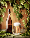 τρύγος μπύρας Στοκ Εικόνες