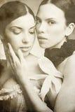 τρύγος ομορφιάς στοκ φωτογραφία με δικαίωμα ελεύθερης χρήσης