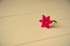 Τρύγος λουλουδιών Στοκ Φωτογραφίες