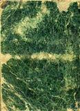 τρύγος Πράσινης Βίβλου γρ& στοκ εικόνες