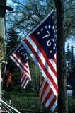 τρύγος σημαιών Στοκ Εικόνα