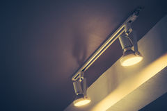 Τρύγος τόνου λαμπών φωτός Στοκ φωτογραφία με δικαίωμα ελεύθερης χρήσης